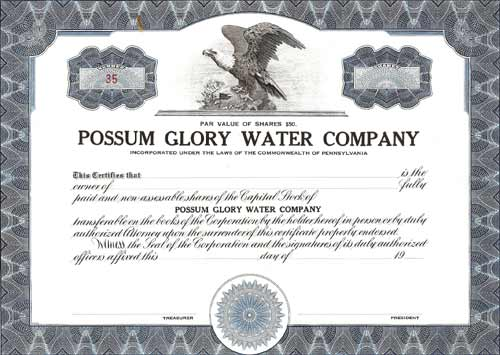 Possum Glory Water Co. Stock Certificate