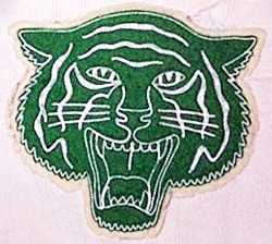 A later version of the Pine Township High School's tiger logo.